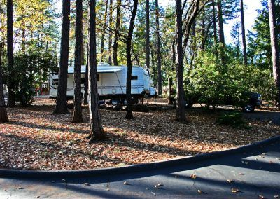 Quail Trails Village is a wooded RV Park in Paradise, CA.