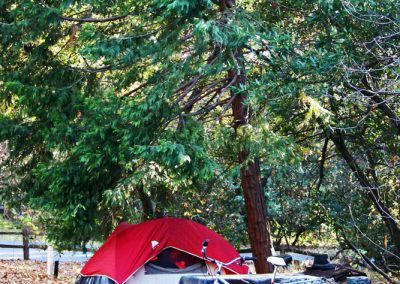 Tent camp here at Quail Trails Village in Paradise, CA